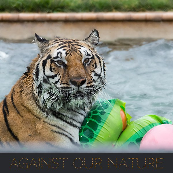 Against Our Nature